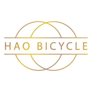 hao bicycle singapore shop