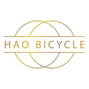 hao bicycle singapore shop