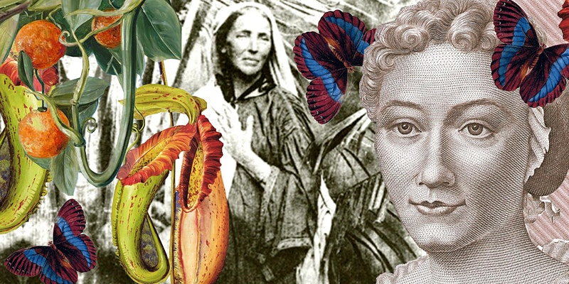 A Feminist's Guide to </br> Botany